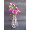 Designer Glass Flower Pot