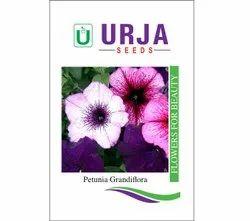Petunia Grandiflora Hula Hoop Seeds, For Agriculture, Packaging Type: Packet