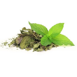 Mentha Piperita Herb Dried Leaves