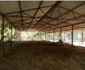 Poultry Shed