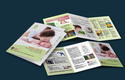 Brochure Design and Print  Service
