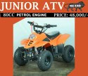 80CC Junior ATV Motorcycle