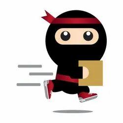 Ninja Business Plan Viability Test