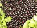 Jamun Extracts