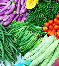 Indian Fresh Vegetables