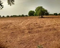 Agricultural Land for sale at Apte Village Taluka Panvel Dist. Raigad