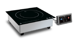 Induction Cooker Built In