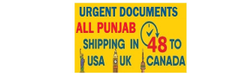 Cheapest Parcel Delivery From Ludhiana To Canada