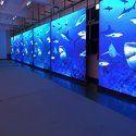 Indoor LED Display Wall