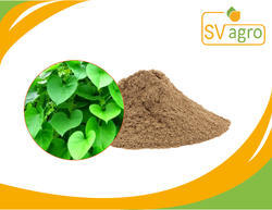 Guduchi Powder - Tinospora cordifolia Powder Latest Price
