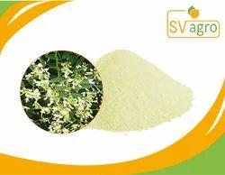 Sophora Japonica Extract Quercetin Quercetin Powder