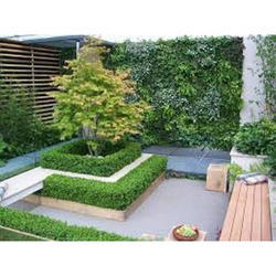Terrace Garden Design Service