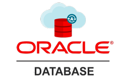 Oracle Software - Buy and Check Prices Online for Oracle Software