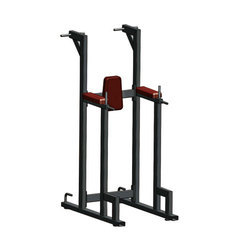Vertical Knees Up Gym Machine