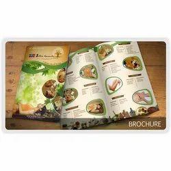 Advertising/Marketing Paper Printed Brochure