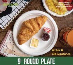 8 inch  Round Plate  Sugarcane Bagasse