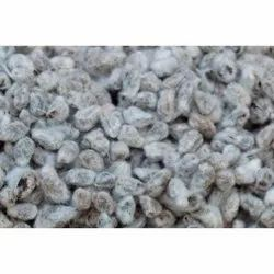Dried Cotton Seeds, For Feed products for livestock, 50 Kg