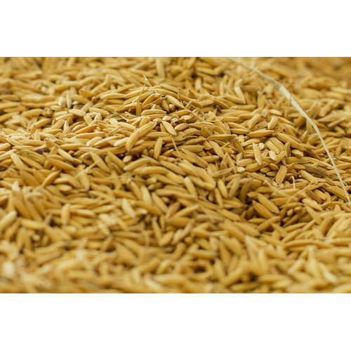 Indian Rice Bran, Rs 14 /kilogram, Choudhury Enterprise