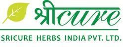 Herbal PCD Franchise in Nellore