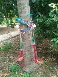 Coconut Tree (Tree Climber )