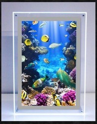 Crystal LED Frame
