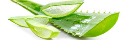 Organic Aloevera Leaves