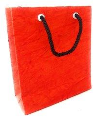 Cherry Red Crush Paper Bag