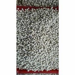 Kesco Global Brand Higenic Moringa Seed Kernel