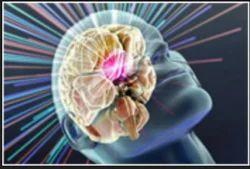 Neurological Service