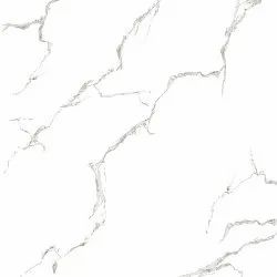 Grey White Floor Tile, Thickness: 20-25 mm