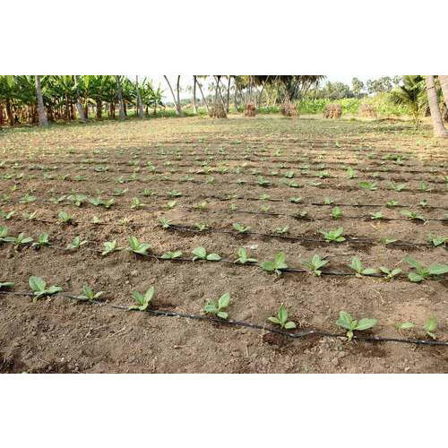 Drip kit 2000 sqm 12 acre at rs 6248 kit drip irrigation drip kit 2000 sqm 12 acre solutioingenieria Gallery