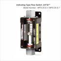 WFS-20-S-1 & WFS-25-S-1  3/4 & 1 BSP Flow Switch
