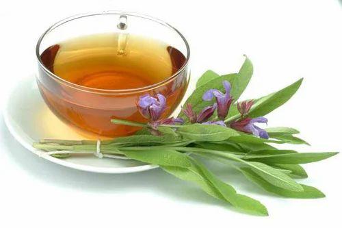 Sage Tea, सेज टी à Ranchi, GSL Fitness |  ID: 18617994688