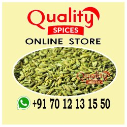 Green Dried Fennel Seeds, Packaging Size: 250 g