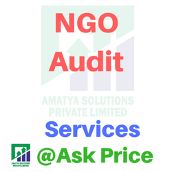 NGO Audit