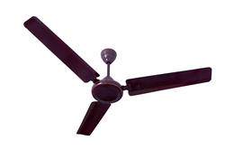 Ceiling Fans - Kalptree - Swift 56 (Glossy Brown )