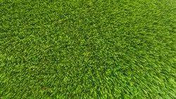 25mm Artificial Wall Grass