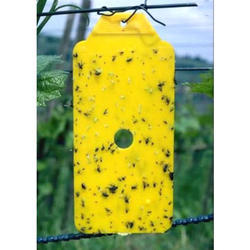 Yellow Sticky Straps