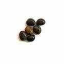 Mucuna Seeds Extract L Dopa