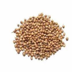 Coriander Seed, Packaging Type: Plastic Bag