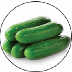 Cucumber Grop Advisory Service
