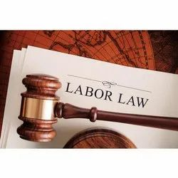 Consulting Firm Consultant Labour Law Registrations