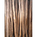 6 Feet Nilgiri Wooden Logs, Diameter: 2-4 Inch