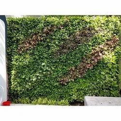 Artificial Vertical Green Garden Wall