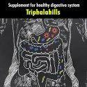 Triphala Tablet - Triphalahills 60 Tablet : Healthy Digestion Supplement