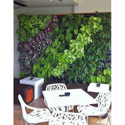 Vertical Indoor Garden Green Wall