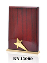 Star Lady Award