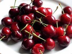 Cherry Oil