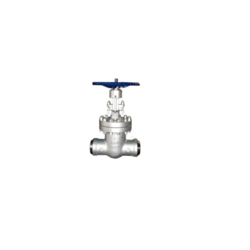 Butt Weld End Globe Gate Valve