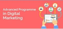 Advanced Programmer In Digital Marketing